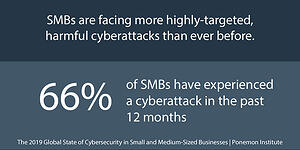 Cybersecurity Risk Management 2020_Statistics